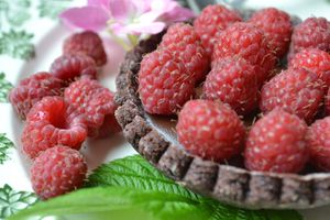 Tartelettes chocolat framboises #recette de fêtes