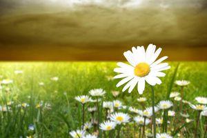 Les Messages de Dieu pour nous Via Linda Noskewicz : RECONNAITRAIS-JE VOTRE AMOUR POUR MOI ? - Mardi 21 Mai 2019