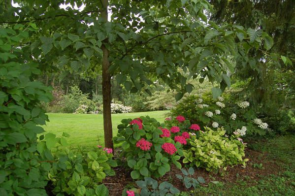 Dans les jardins en 2008 puis le dimanche 7 juin 2009 lors des Journées Antiquités et Ornements 10è édition