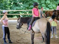 Stage Equestre Comines (22/07-26/07)