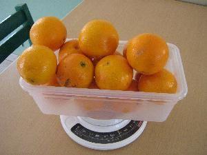 notre confiture d'orange ...