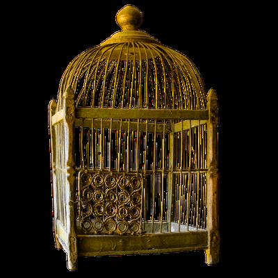 La prison dorée