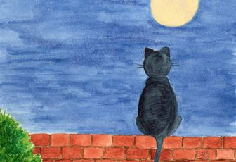 "carte postale ""chat au clair de lune"" disponible"