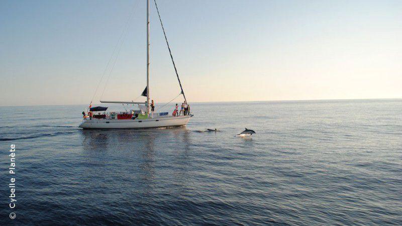 Grand Tour méditerranée, une expédition scientifique transméditerranéenne en voilier entre écovolontariat et aventure en mer