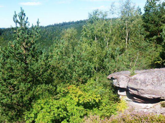 C'était le 30 août, les Hauts de La Vancelle, en itinéraire découverte