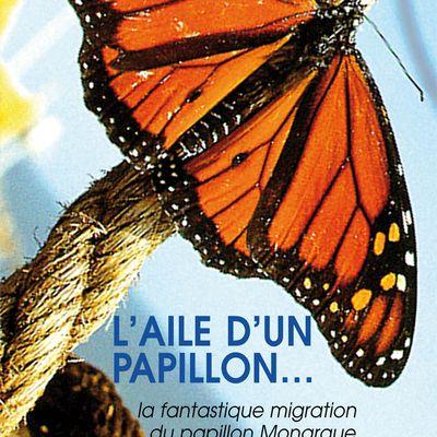 L'aile d'un papillon /Nick de Pensier. – Les films du paradoxe, 2007. – 50 mn