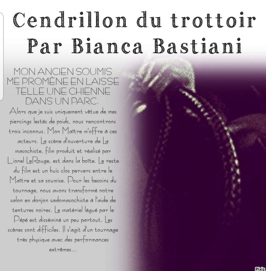 Dans l'enfer de la possession: Cendrillon du trottoir par Bianca Bastiani