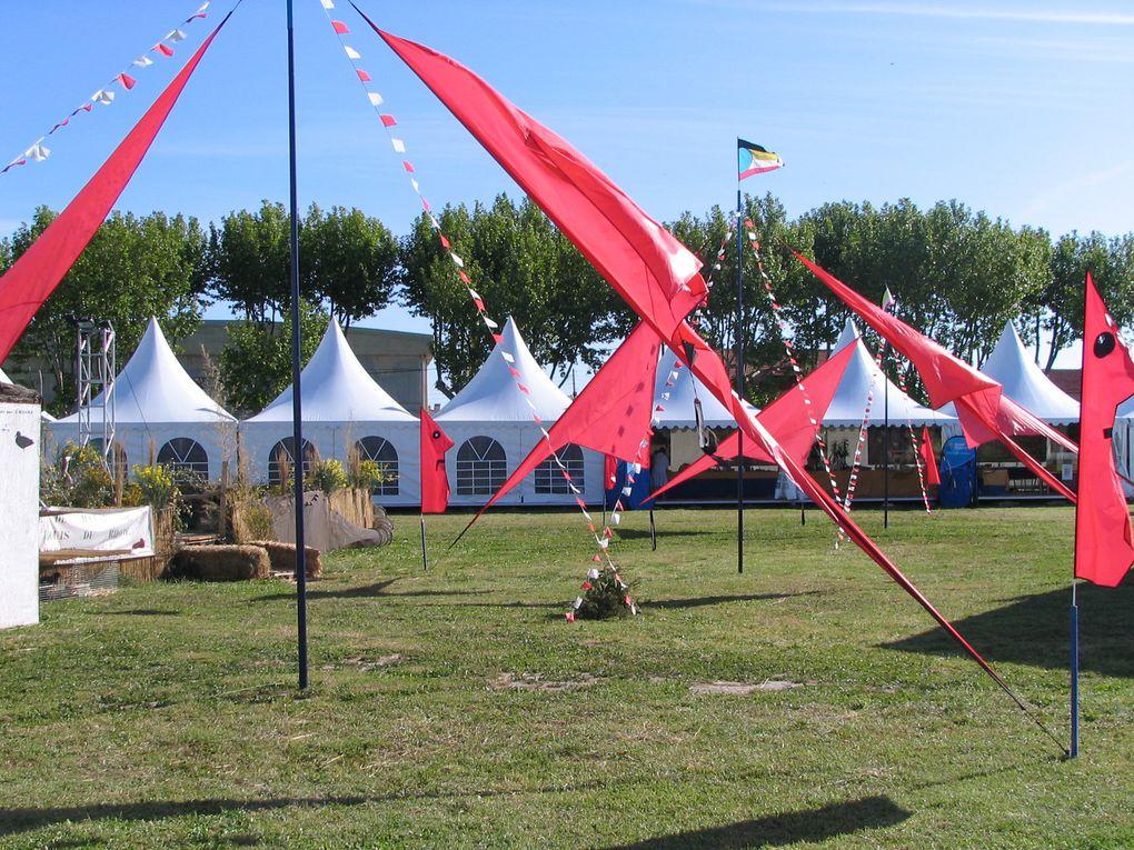 Festival de la Camargue et des oiseaux 2015