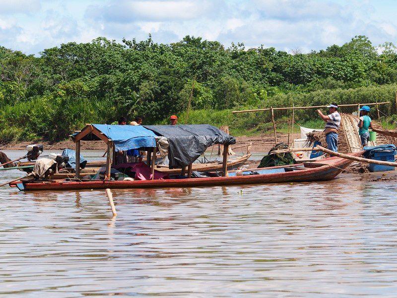 EXPERIENCE AMAZONIE