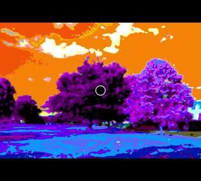 Une géniale illusion d'optique ... notre cerveau corrige les couleurs d'une photo en noir & blanc