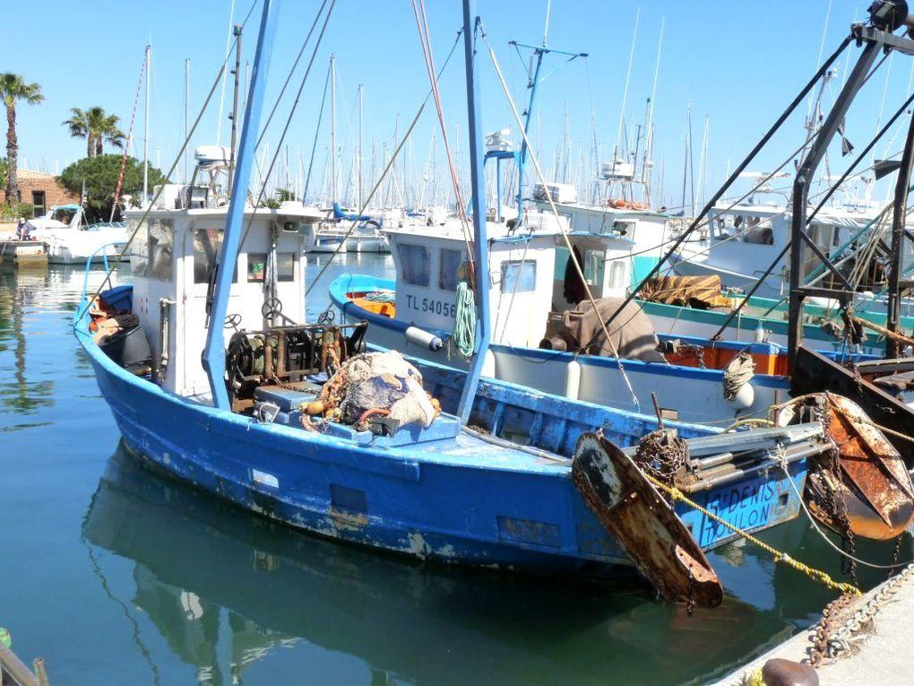 ST DENIS  TL326038 , Dans le port de Hyères