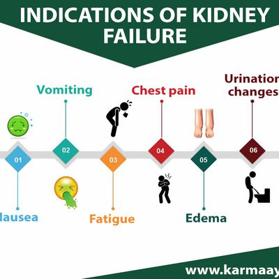 Ayurveda Therapy For Kidney Failure