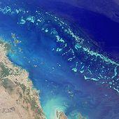 Australie: La Grande barrière de corail - Doc de Haguenau