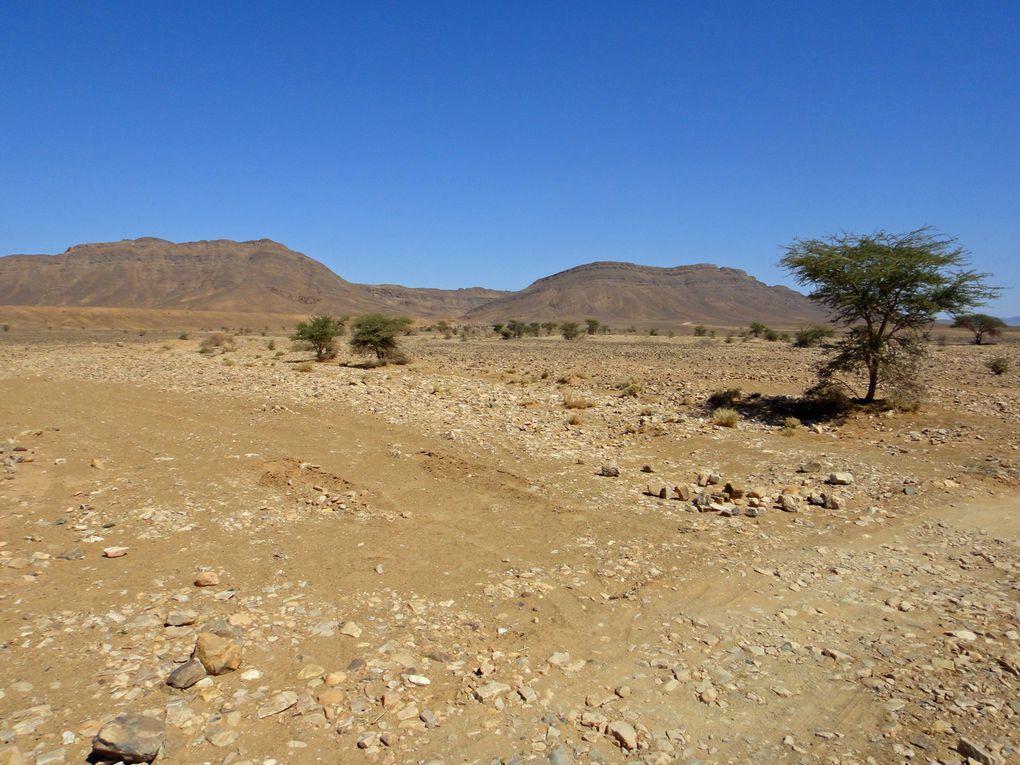 Album - 2012-03-Rando-Maroc-Zagora