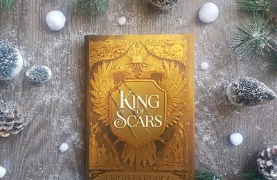 King of Scars, tome 1 - Leigh Bardugo