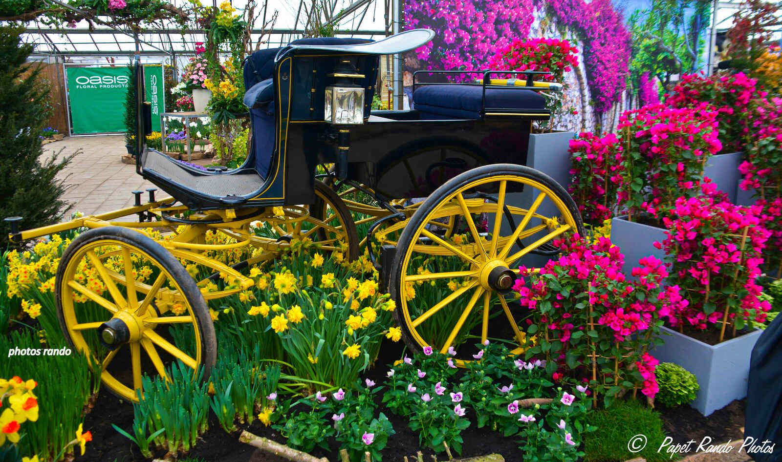 Les Floralies de Grand Bigard, photos sur plusieurs années, endroit magnifique avec plus 1 million de bulles partout dans le parc
