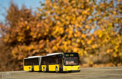 1/50 Bus articulé Man Lion's City, Siku (3736)