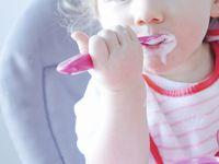 Copyright Papa Ours Tous droits réservés ©