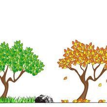Les quatre saisons de l'amour