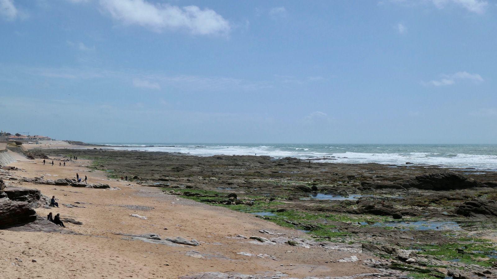 Marée Haute, Marée Basse ....la mer que du bonheur