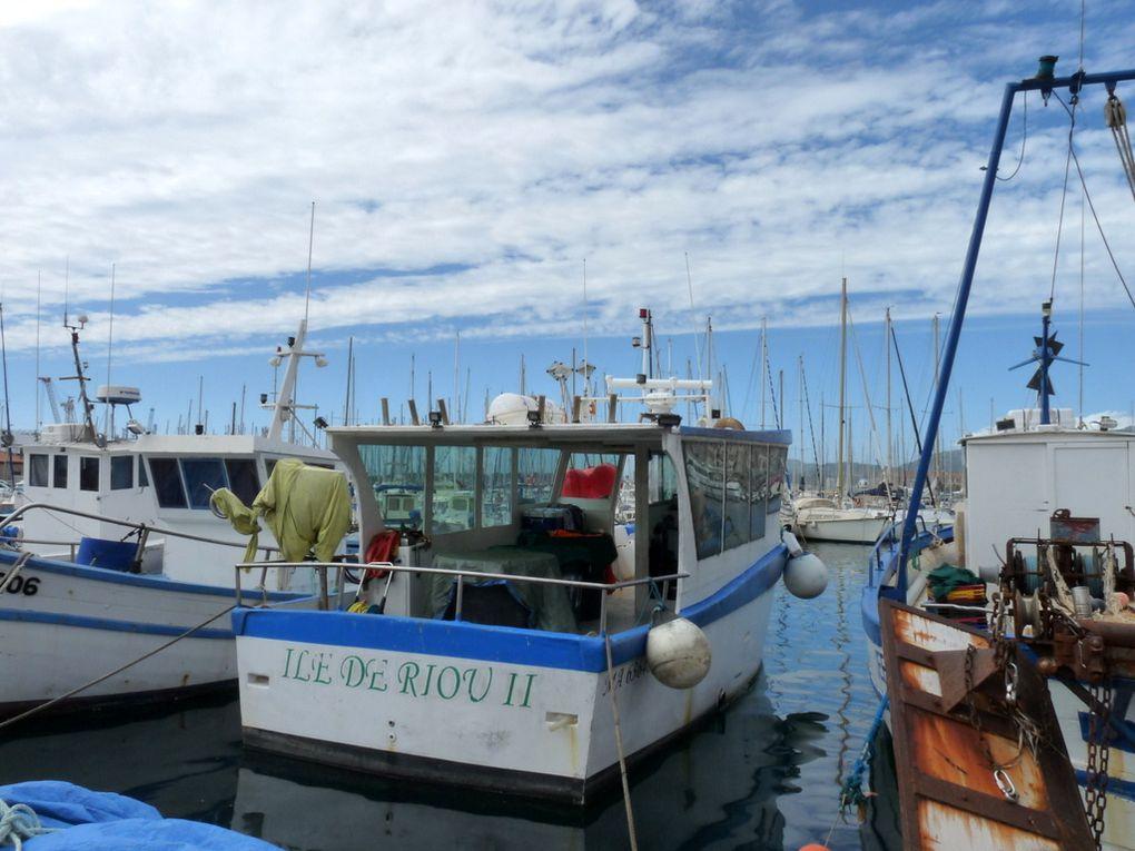 ILE DE RIOU  II , MA 636485 à quai à Toulon le 17 septembre 2015