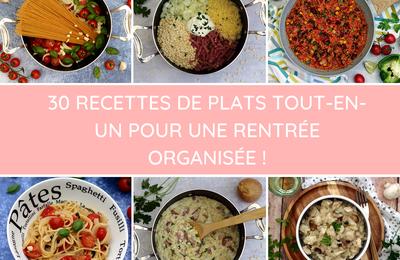 30 recettes de one pot (repas tout-en-un)