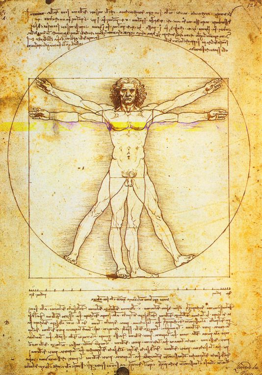 Léonard de Vinci, né à Vinci le 15 avril 1452 et mort à Amboise le 2 mai 1519, est un peintre italien et un homme d'esprit universel, à la fois artiste, scientifique, ingénieur, inventeur, anatomiste, peintre, sculpteur, architecte, urbaniste,