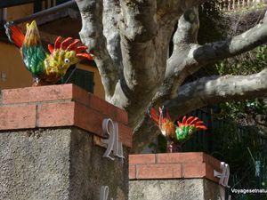 Balade dans Bormes-les-Mimosas (83)