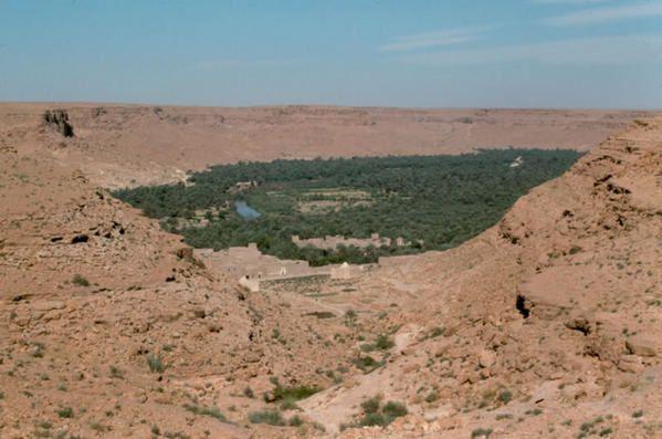 <p>des superbes photos de la province d'Errachidia la vall&eacute; de ZIZ, GHRIS, ... ainsi du Maroc: photos coll&eacute;ct&eacute;s de l'internet et des amis.</p> <p>&#1605;&#1580;&#1605;&#1608;&#1593;&#1577; &#1589;&#1608;&#1585; &#1580;&#1605;&#1610;&#1604;&#1577; &#1578;&#1585;&#1608;&#1610; &#1580;&#1605;&#1575;&#1604; &#1575;&#1602;&#1604;&#1610;&#1605; &#1575;&#1604;&#1585;&#1588;&#1610;&#1583;&#1610;&#1577; : &#1608;&#1575;&#1581;&#1577; &#1586;&#1610;&#1586; &#1608; &#1594;&#1585;&#161