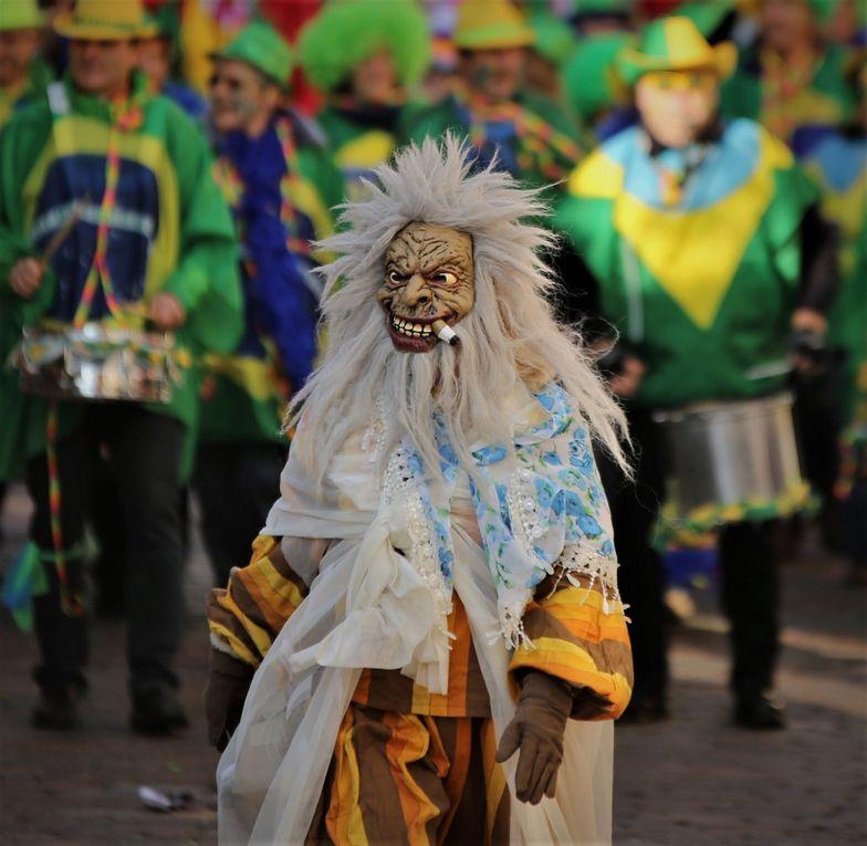 Tausende jubelten beim 49. Rosenmontagszug des Veitshöchheimer Carneval-Clubs 32 Gruppen zu