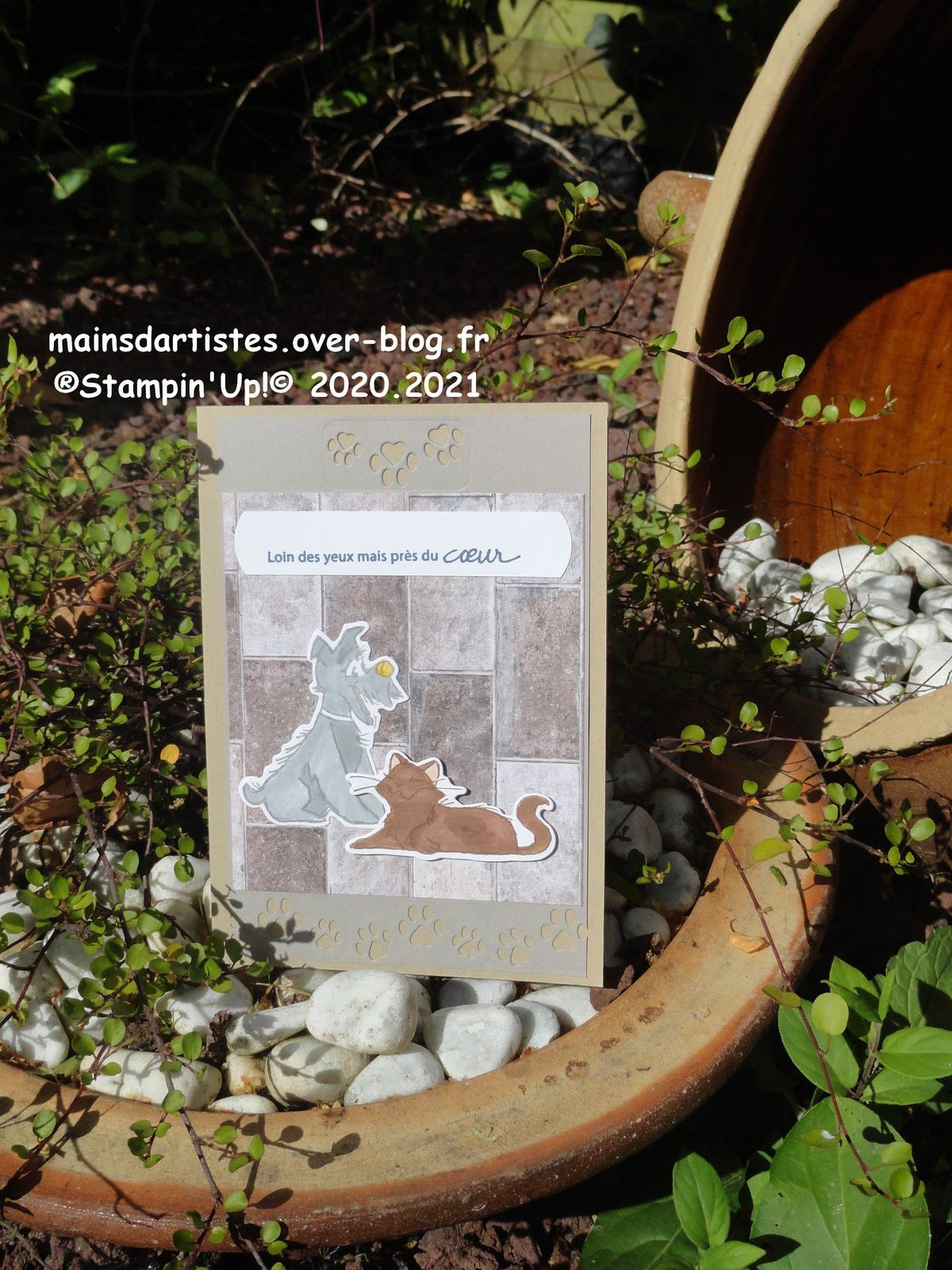 LOT,PAMPERED PETS,STAMPIN'UP!.