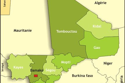 #Mali : les dangers de la seule option militaire, par Yehia Ag Mohamed Ali