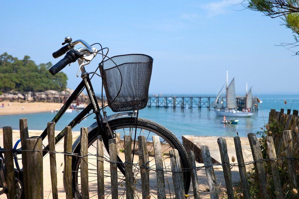 Partez à la découverte du Golfe du Morbihan !