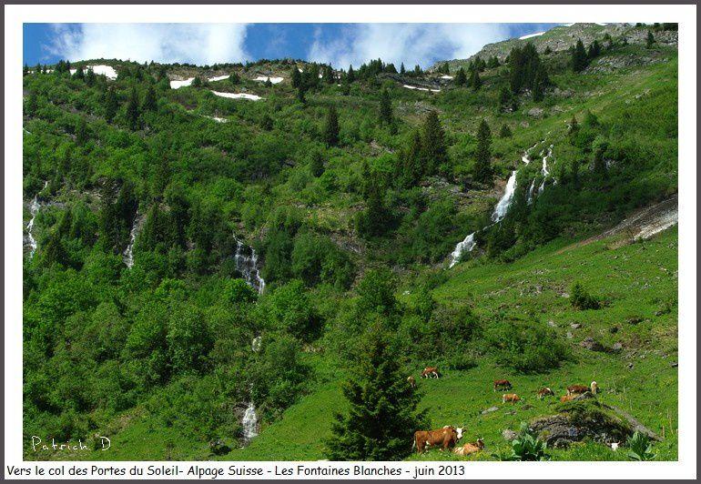 Vues des balades entre Morgins, Les Cornettes de Bise, Les lacs Vert et de Chésery...
