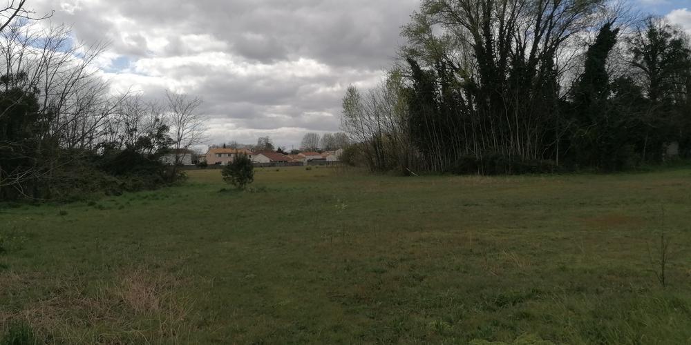 Reconversion du parc des sœurs à Bègles