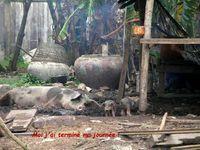 SITUATIONS INSOLITES AU CAMBODGE