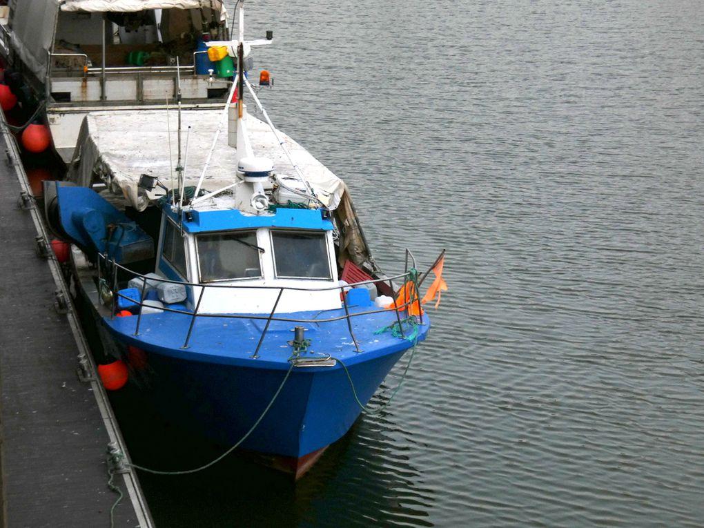 L'OCEANE  BL626648 ,a quai dans le port de Boulogne sur Mer  le 06 juin 2019