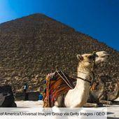 L'Egypte va interdire les promenades à dos d'animaux sur plusieurs sites touristiques