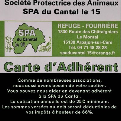 Association SPA du Cantal