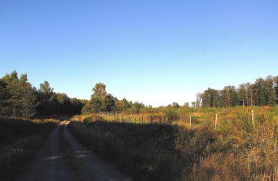 le carrefour du Poirier d'Oignon