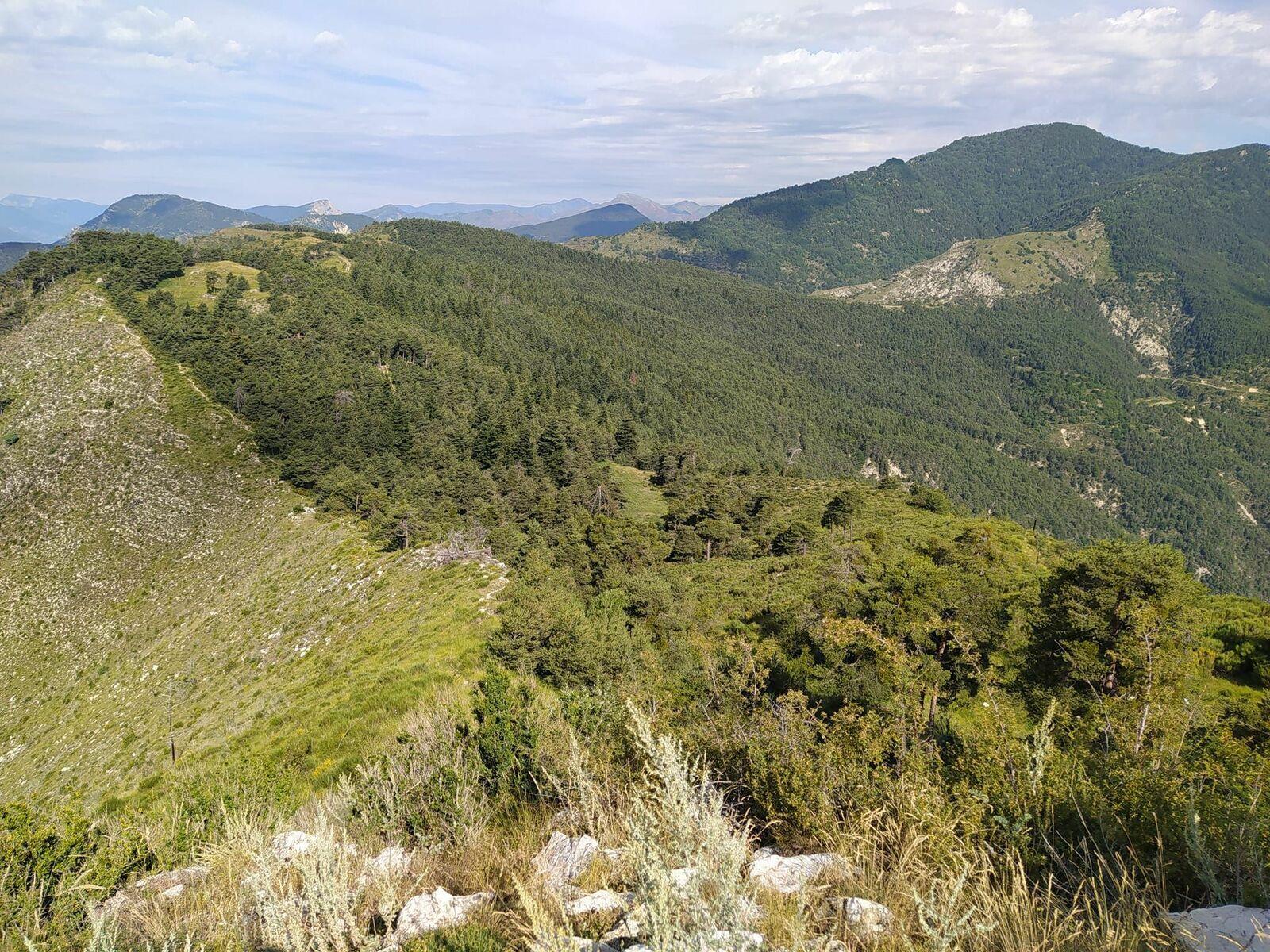 Mont Falourde (1306m)