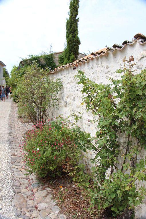 Talmont sur Gironde , plus beau village de France