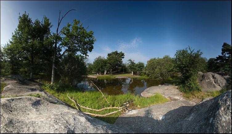 La forêt de Fontainebleau, autrefois appelée forêt de Bière est un important massif boisé de 25 000 ha, dont 21 600 ha sont aujourd'hui administrés en forêt domaniale.  Ce massif, au centre duquel se trouve la ville de Fontainebleau, est situ