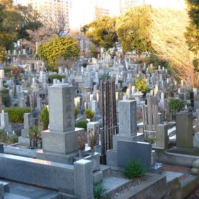 青山霊園 Le cimetière d'Aoyama