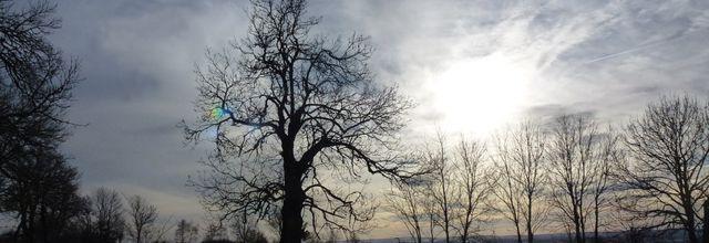 Quelques photos de paysages d'Auvergne pour bien démarrer l'année !
