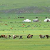 MONGOLIE, Rencontre avec les Chamans - Les Plumes de l'Aigle