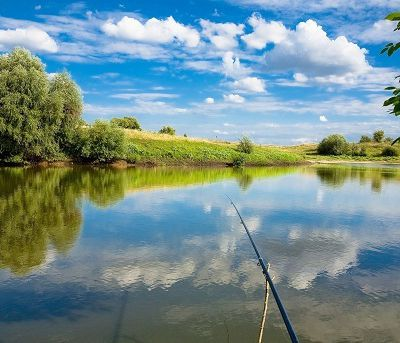 Fishing and Fishing Tips