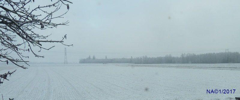 photos prises dans la région de Colmar