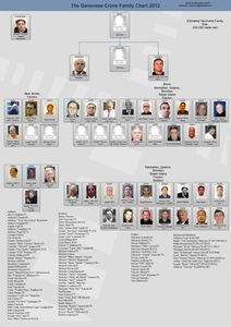 UN SOLDAT DE LA FAMILLE GENOVESE  CONDAMNE POUR TRAFIC DE MARIJUANA
