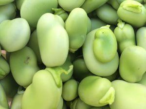 Salade de fèves, ail & citron